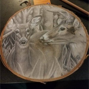 deer drawing by Jonah Osgood